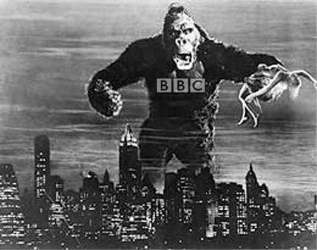 the BBC gorilla